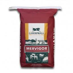 Corrector Vacas Secas Mervigor Dryplus 30kg