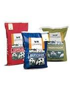 Comprar online piensos vitamínicos minerales para ganado